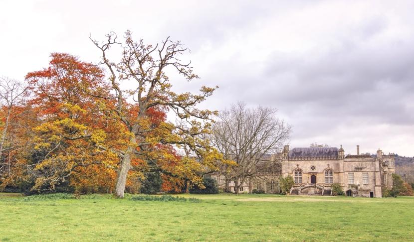 6 idalenych miejsc do zrobienia jesiennych zdjęć na południuAnglii